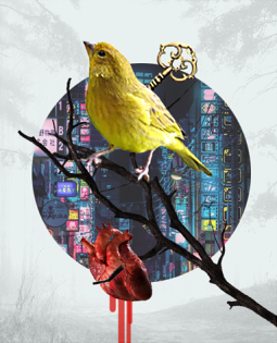 Постер к Писатель, открывший миру современную Японию