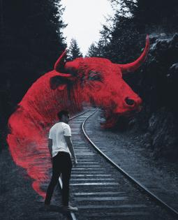 Постер к Красное и черное