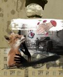 Постер к Человек как «пустота» и как «мусорное» существо, зависимое от влияний и освободившееся от них