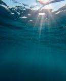Постер к Переход к голубому океану.  За пределами конкуренции