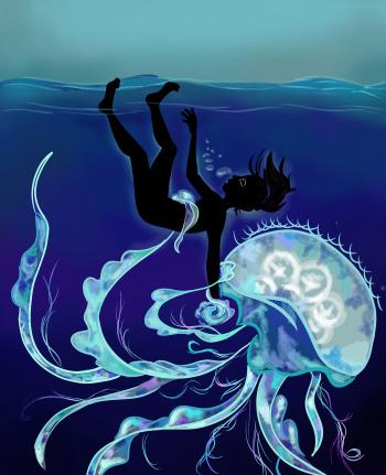 Постер к Доклад о медузах